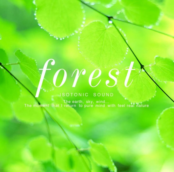 NSG-302-forest