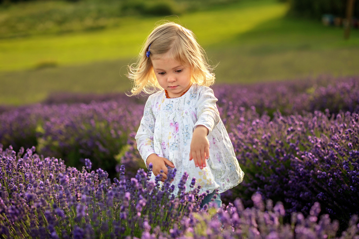 Child, Walking, In A Row, Sunset, Lavender