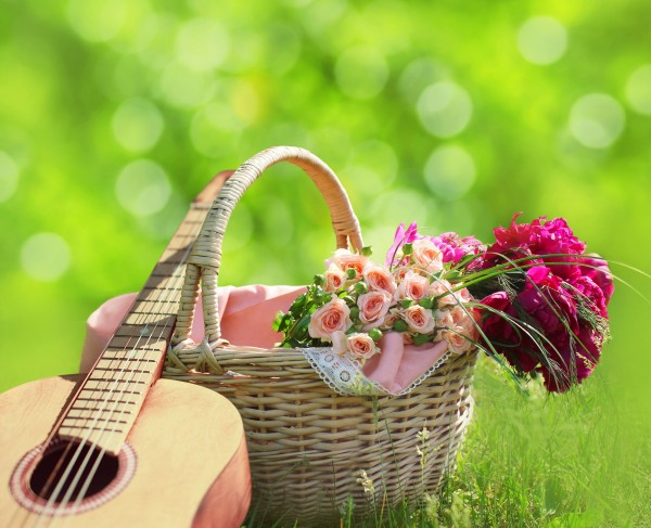 Romance, love, valentine's day concept - wicker basket with bouquet of flowers, guitar on the grass. Spring fresh sunny background